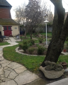 The garden bursting back to like. Can't wait to get my hands dirty with all the work that awaits!